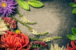 Garden Blumen mit Blättern auf Schiefer