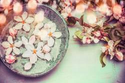 Wasserschale mit Frühlingsblüten