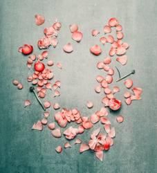 Schöner Blumenrahmen mit rosa Blütenblättern