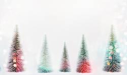 Tannenbaum Wald mit Bokeh