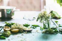 Holunderblüten mit Zucker und Zitrone auf dem Tisch