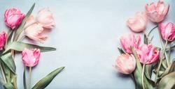 Schöne Tulpen in rosa Pastellfarbe