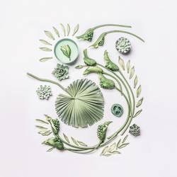 Composing mit grünen Pflanzen und Blumen