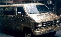 Golden Van