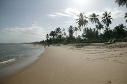 Strand Brasilien 01