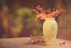 Stillleben im Herbst