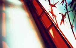 Bambus Fenster