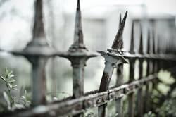 Zacke aus dem Zaun brechen