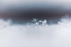 Dreamy winter snowflake ice crystals