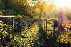 Herbstspaziergangsaussichten