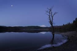 Stille Nacht - eisige Nacht