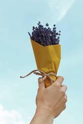 Frauenhand mit Blumenstrauß von Blumen über blauem Himmel
