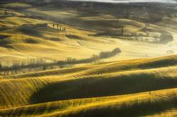 Tuscany spring morning on fogy fields