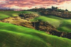 Beautiful fields, hills of Tuscany, Italy