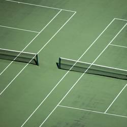 Rasen ist gefährlich | Tennisarm
