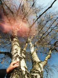 Testbild | heiße luft