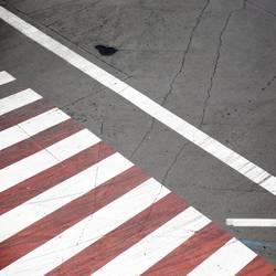 rotes Zebra mit weißen Streifen | on the road again