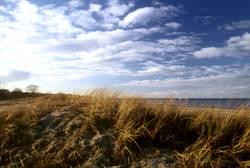 Am weißen Strand von...