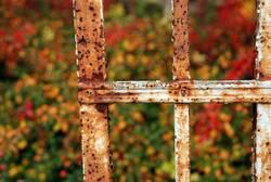 Herbstrost