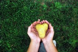 Herz - in welchen Händen liegt deines?