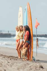 Four surfer girls and dog in the frame