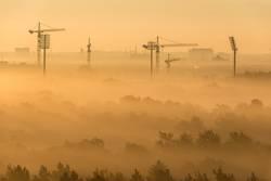 Baukräne in Berlin im Morgenlicht