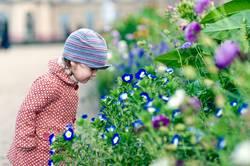 Kind betrachtet Blumen