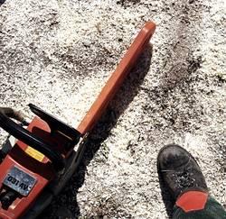 Holz ist ein Stück Lebensqualität