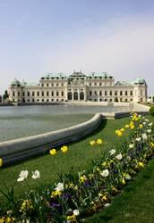 Wien, nur Wien
