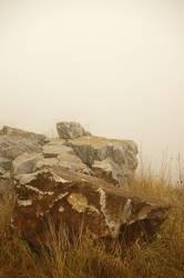 ...verdammt viel Nebel...