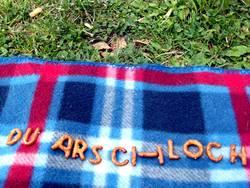 Picknick mit Folgen