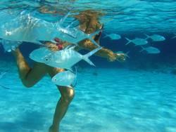 Frau mit tropischen Fischen