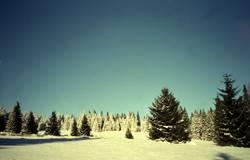 200% Winter