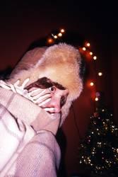 Frostige Weihnacht