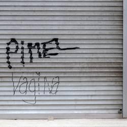 Pimel Vagina