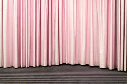 Rosa Vorhang