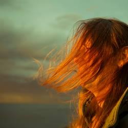 Hiddensee l hair