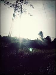 'Sonnenschein