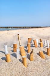 Close up picture of cigarette butts stuck in sand.