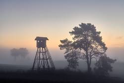 Deer hunting tower on a field in Autumn at dawn