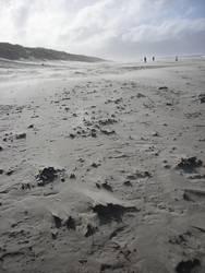 Sandsturm Teil 2