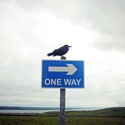 luftig | one way