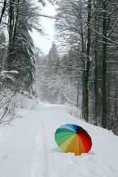 Schneeschirm