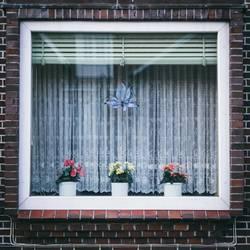 Langeoog Window
