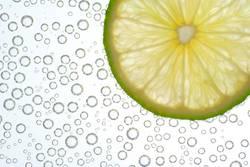 Blubber-Limone