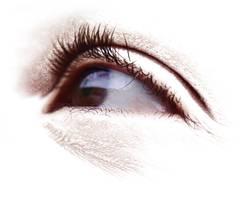 Der Augenschein