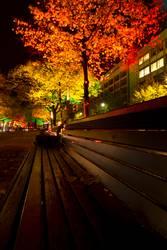 Lichtbank