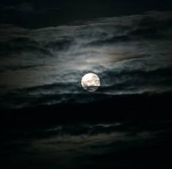 bei Nacht aktiv