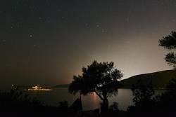 Licht der Ferne beim Olivenbaum