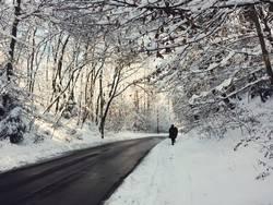 Schneelandschaft mit Straße